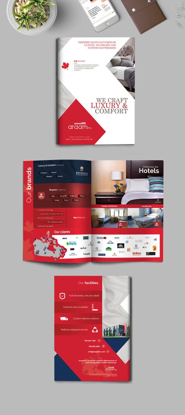 Indesign Brochure Illustrator Brochure